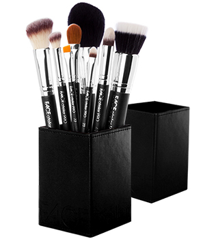 PRO Series Brush Set with Magnetized Case